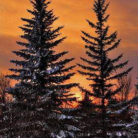December Sunset by David Matthews