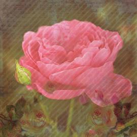 Decorative and Nostalgic Rose Art Work by Johanna Hurmerinta