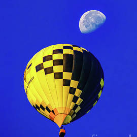 Deptford Pd Hot Air Balloon by Nick Zelinsky