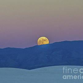 Descending Moon by Stephen Whalen