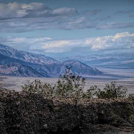 Desert Landscape by Jim Cook