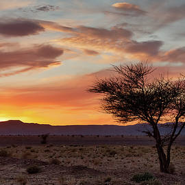 Desert Sunset II by Peter OReilly