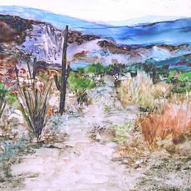 Desert Trail 2 by M Diane Bonaparte