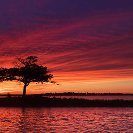 Detroit Point late Summer Sunset by Ron Wiltse