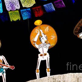 Dia De Los Muertos by Diann Fisher