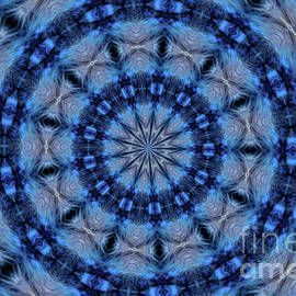 Blue Jay Mandala by Debbie Stahre