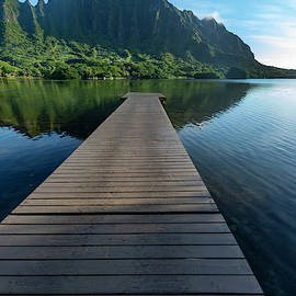 Dock to Paradise by Sean Davey