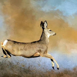 Doe on the Run by Donna Kennedy