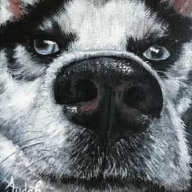 Dog #3 by Alana Judah