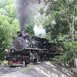 Dollywood Express by Dwight Cook