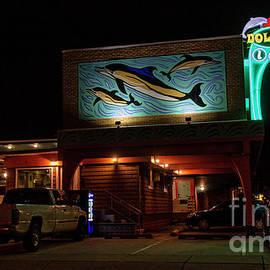 Dolphin Inn by Lenore Locken