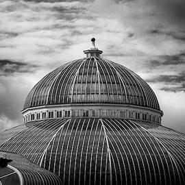 Dome by Matthew Blum