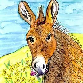 Donkey  by Patty Donoghue