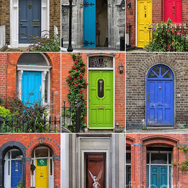 Doors of Dublin by Diana Rajala