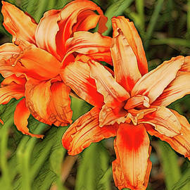 Double Orange Daylilies by Dennis Lundell