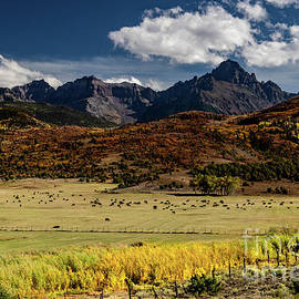 Double RL Ranch by Norma Brandsberg