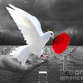 Dove of Peace by Louise Lavallee