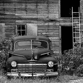 Down By The Barn by Guy Shultz