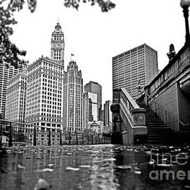 Downtown Chicago From Riverwalk South by Carlos Alkmin