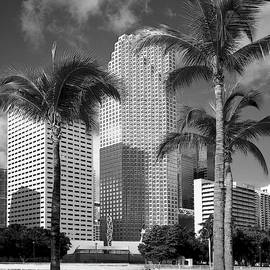Downtown Miami 071802 by Rudy Umans