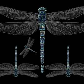 Dragonflies on Black by Joan Stratton