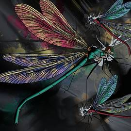 Dragonflies Whimsy by Joan Stratton