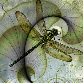 Dragonfly on factal by Kira Bodensted