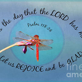 Dragonfly Within The Eye Of God by Diann Fisher