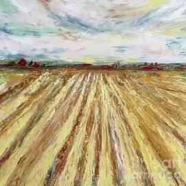 Dream Fields Midwest Farm by Patty Donoghue