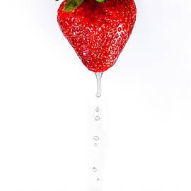 Dripping Strawberry by Sandi Kroll
