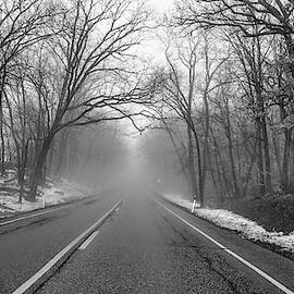 Driving Into The Fog by Ricky L Jones