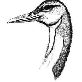 Duck PAINT MY SKETCH by Delynn Addams