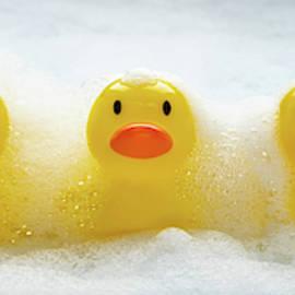 Duckies Duckies Duckies