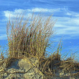 Dune Grass In The Sky by Bill Swartwout Fine Art Photography