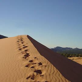 Dune by William Moore