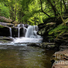 Dunloup Creek Falls by Norma Brandsberg