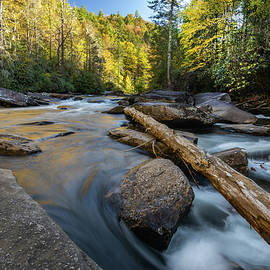 Dupont State Forest Lower Falls by Donnie Whitaker