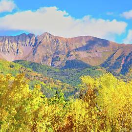 Durango Fall Colors by Cathy P Jones