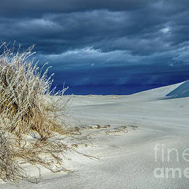 Dusk At White Sands by Stephen Whalen