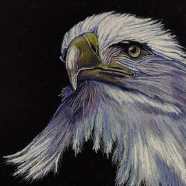 Eagle on Black by Jay Johnston