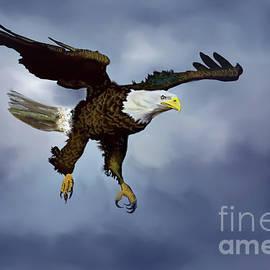 Eagle Digital Drawing by Tim Wayland