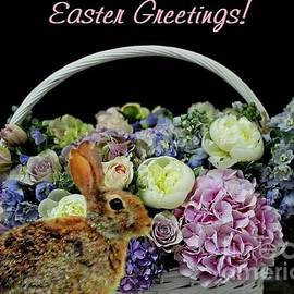 Easter Greeting by Janette Boyd