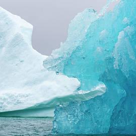 Eating The Iceberg by Raelene Goddard