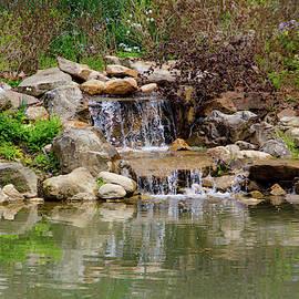 Edith Carrier Arboretum Waterfall by Allen Nice-Webb