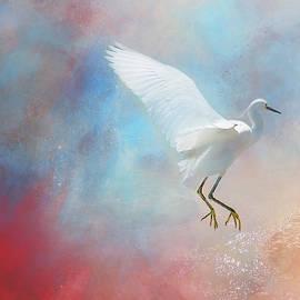 Egret Landing in Beauty by Terry Davis