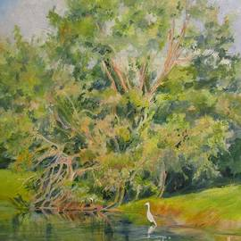 Egret on the Waterway by Barbara Moak