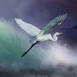 Egret Take-off 2 by Morgan Wright