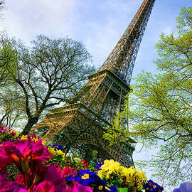 Olivier Le Queinec - Eiffel Tower in Bloom