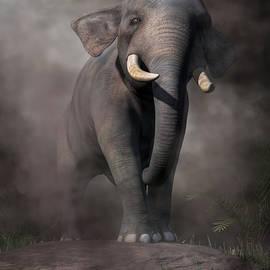 Elephant by Daniel Eskridge