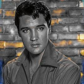 Elvis Presley The Hunk by Teresa Trotter